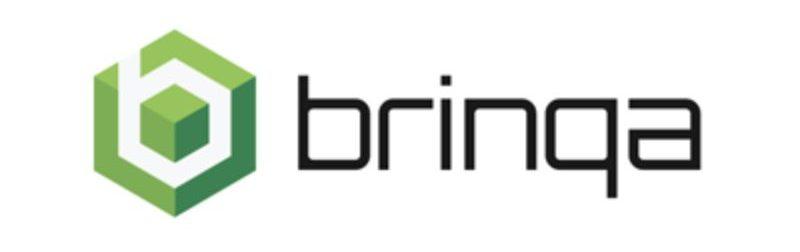 brinqa logo